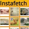instafetch : jQuery Fetch Instagram media Plugin