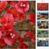 kGallery : jQuery thumbnail slideshow Gallery Plugin
