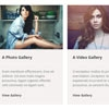 DV Gallery : Responsive WordPress Gallery Plugin